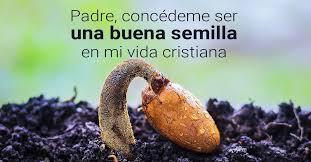 Resultado de imagen para Señor soy tu semilla